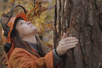 une femme portant un casque de protection, prend un tronc d'arbre entre ses mains et regarde vers la cime.